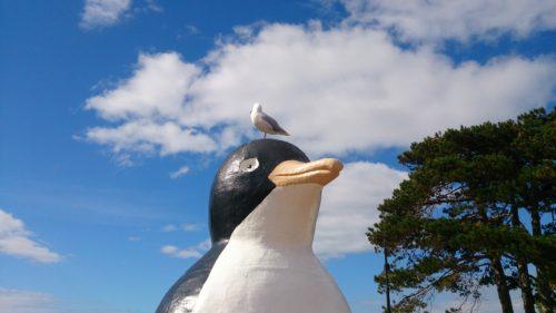 タスマニアのペンギン(Penguin)という町。絶景ドライブでBig Penguin Statueを見に行こう